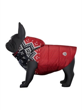 Moncler Genius - Poldo Dog Couture X Moncler Knit Print Jacket - Pet Accessories