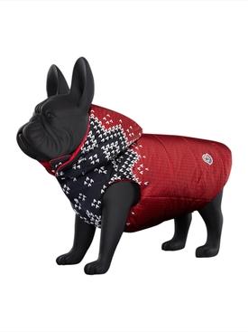 Poldo Dog Couture x Moncler knit print jacket