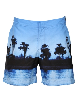 Palm trees print swim shorts