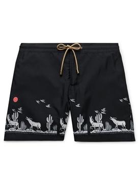 Titan black swim trunks