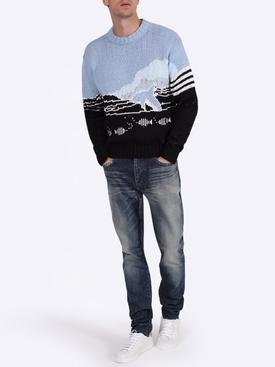 Dolphin intarsia knit sweater