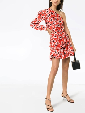 Christina floral print mini dress