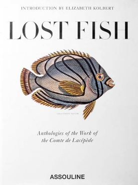 Assouline - Lost Fish - Women