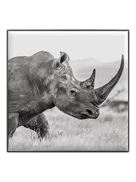 Luminescent Eye Shadem Rhinoceros