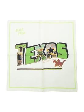 Texas Postcard Scarf