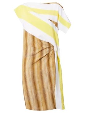 Flag and Animal Print Silk Asymmetric Dress