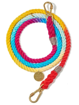 MULTICOLORED UP-CYCLED ADJUSTABLE DOG LEASH