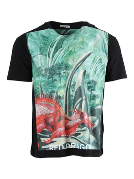 Dragon Garden Graphic Print T-Shirt GREEN