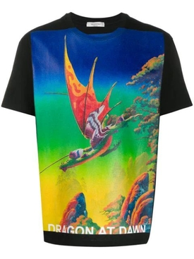 Dragon Garden Graphic Print T-Shirt MULTICOLOR
