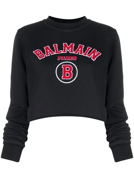 Cropped collegiate logo sweatshirt