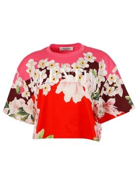 Floral logo crop top t-shirt