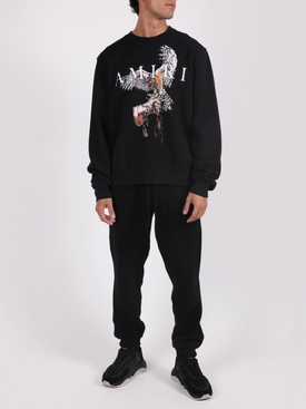 Falcon crewneck jumper sweater