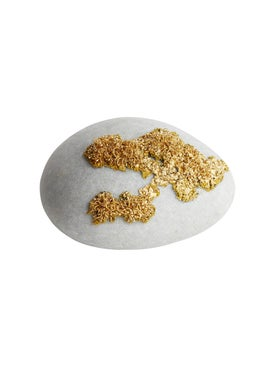 Dragonfly - Lichen D'or Decorative Stone - Home