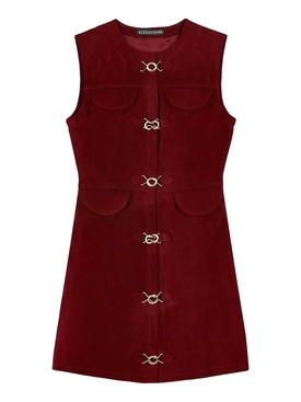 Burgundy suede mini dress