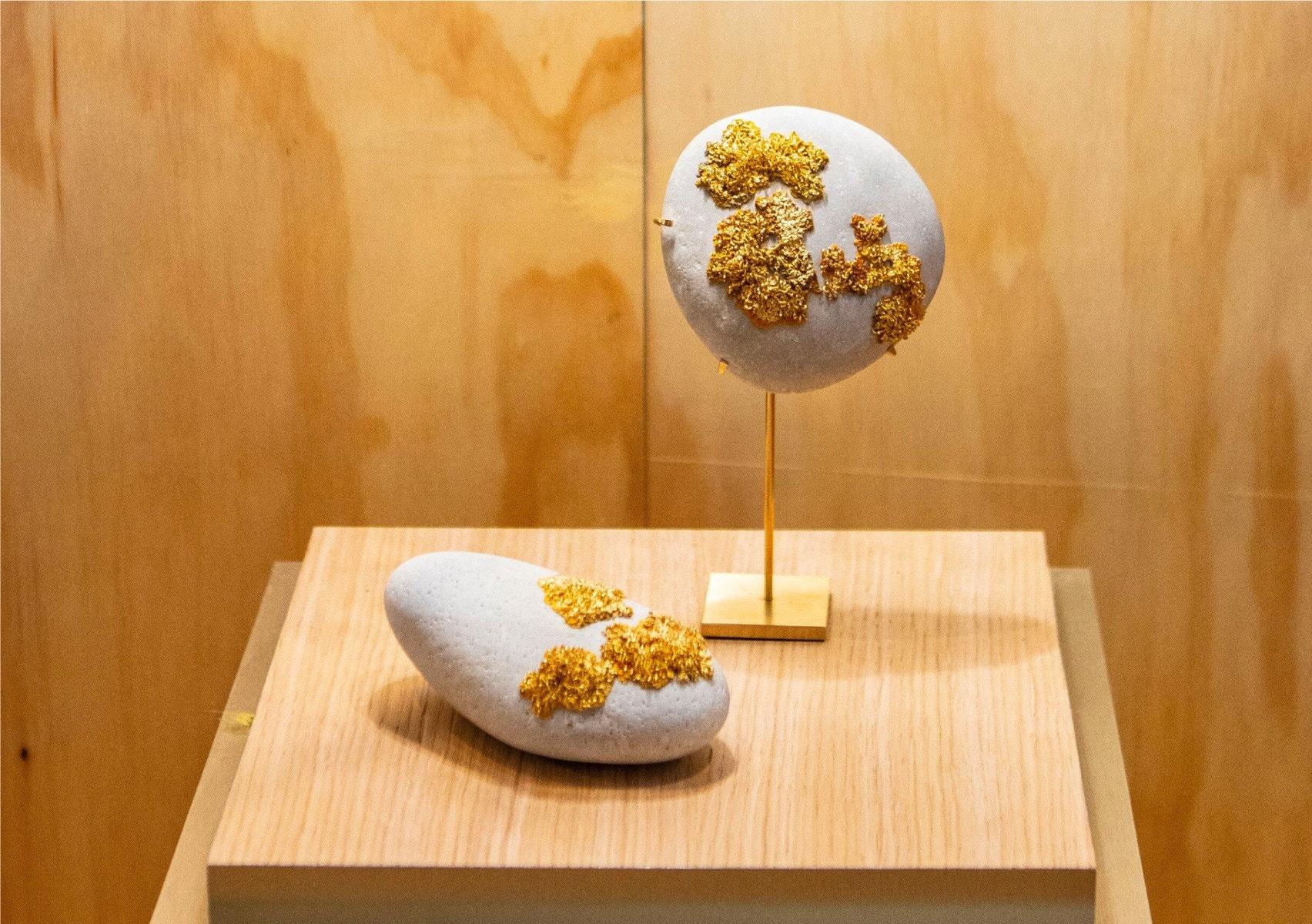 Lichen D'or Decorative Stone