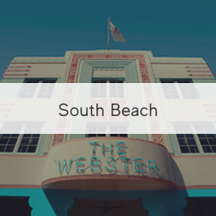 Visit the webster south beach